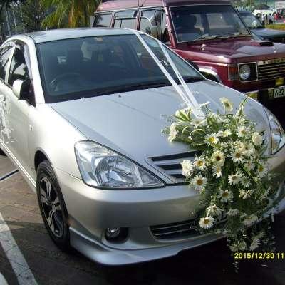 Car Decor (38)